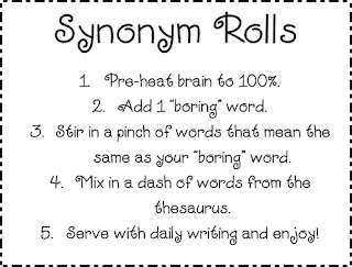 Synonym Antonym and Hyponym  Manners Blog