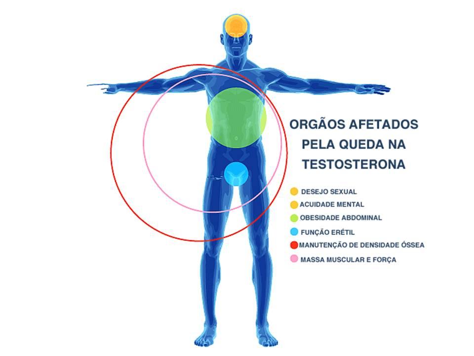 Idade e a baixa testosterona