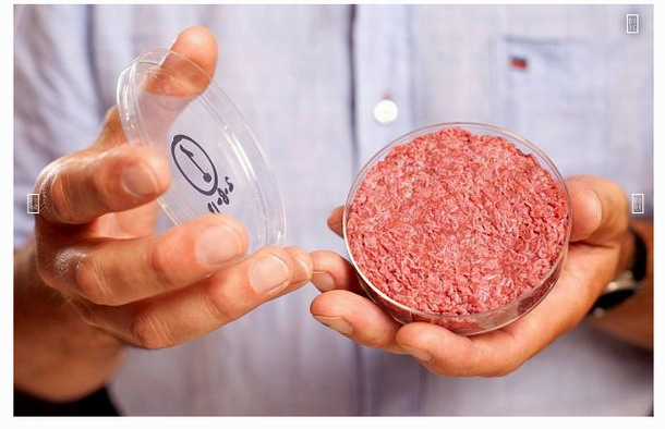 Carne producida en laboratorio. Productores prometen una producción a gran escala dentro de algunos años. ¿Estará la gente dispuesta a dejar de sacrificar animales y alimentarse de carne producida en laboratorio?