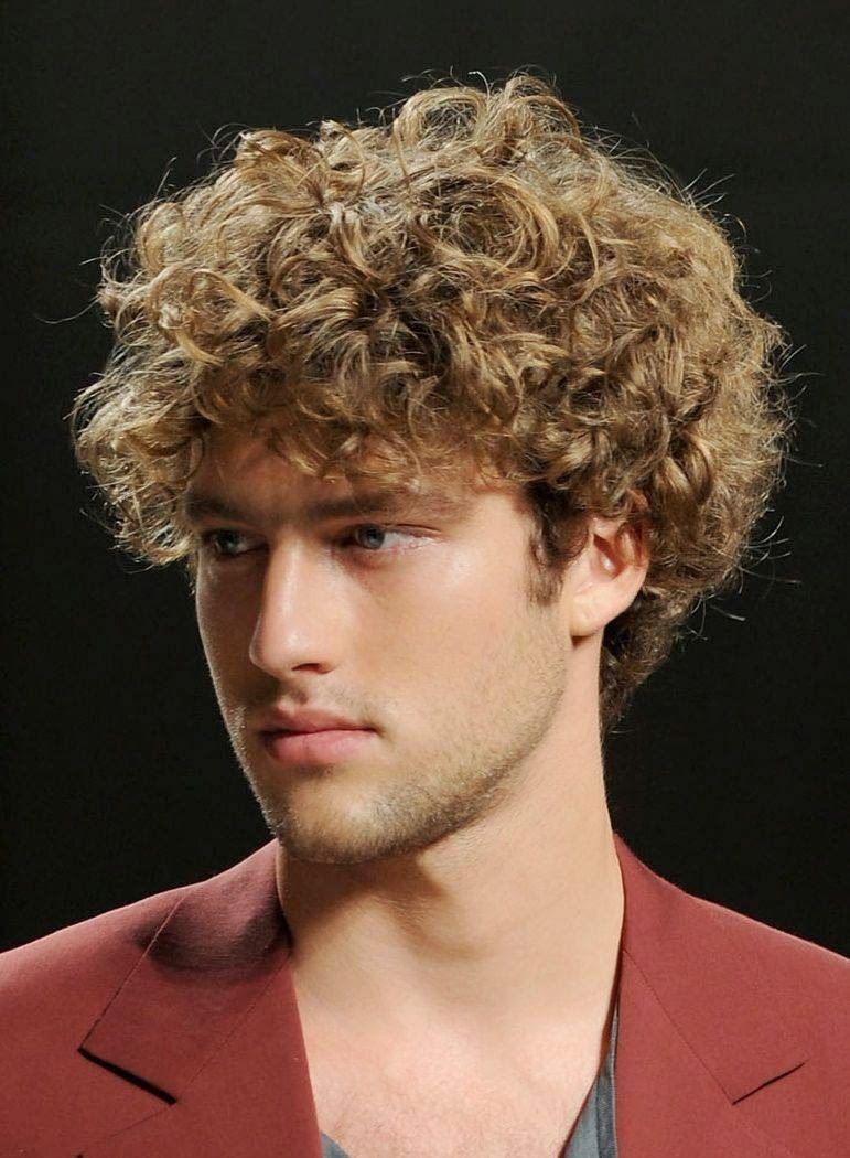 Hairstyle 2014 Mens Curly Hairstyles 2014