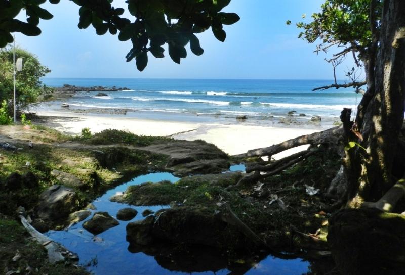 Pantai Pancur - Salah Satu Pesona Taman Nasional Alas ...