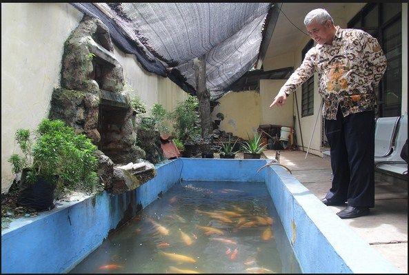 Contoh 49 Gambar Kolam Ikan Hias Minimalis Terbaik