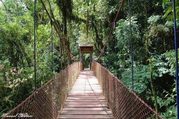 Catarata El Tigre, puente colgante