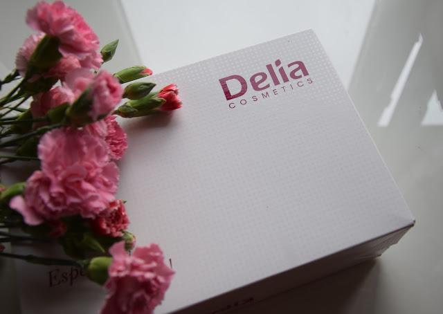 Jak sprawdza się henna do brwi od Delia Cosmetics?
