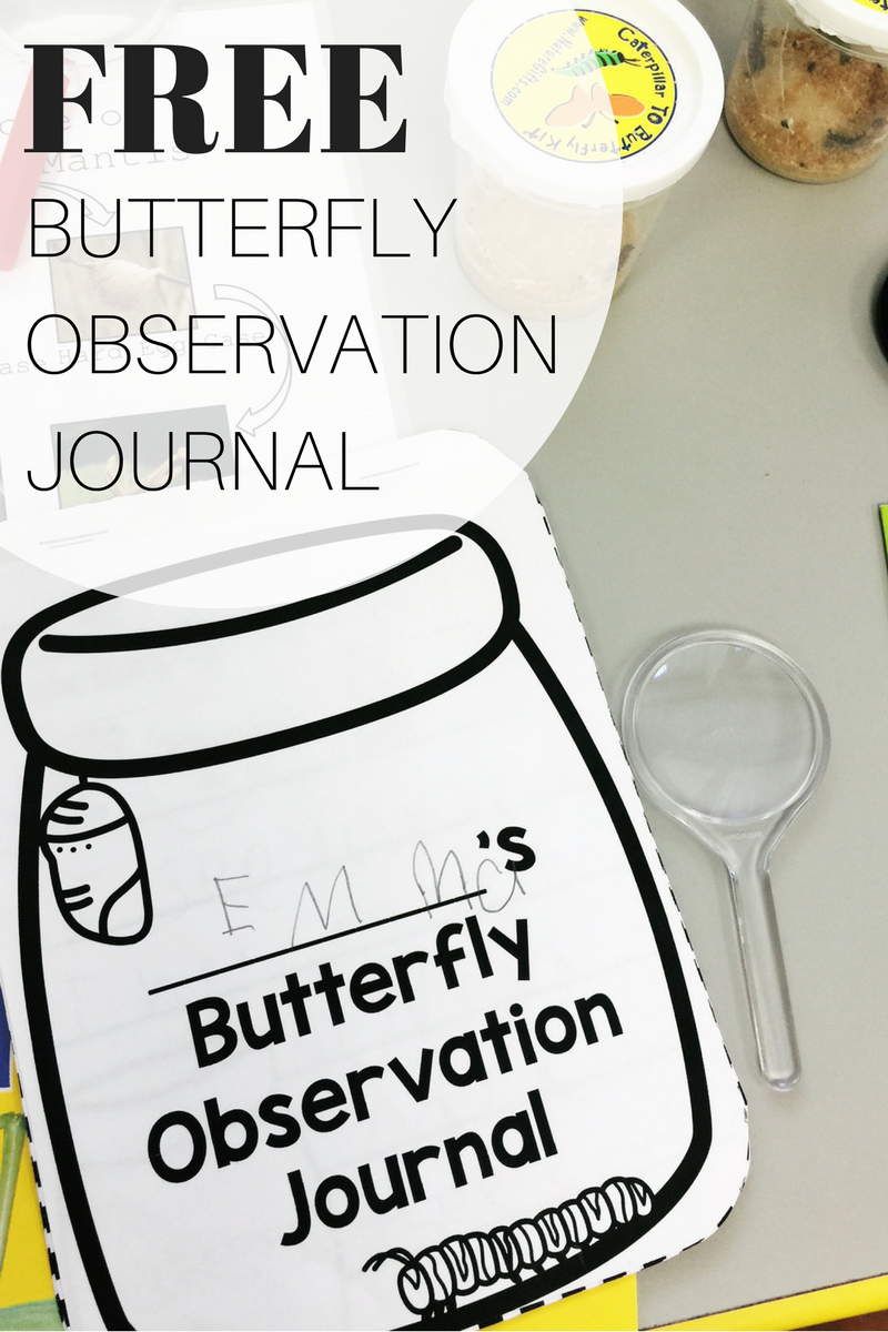 Butterfly Observation Journal Freebie Teaching Special Thinkers