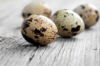 benefits of quail eggs on the skin