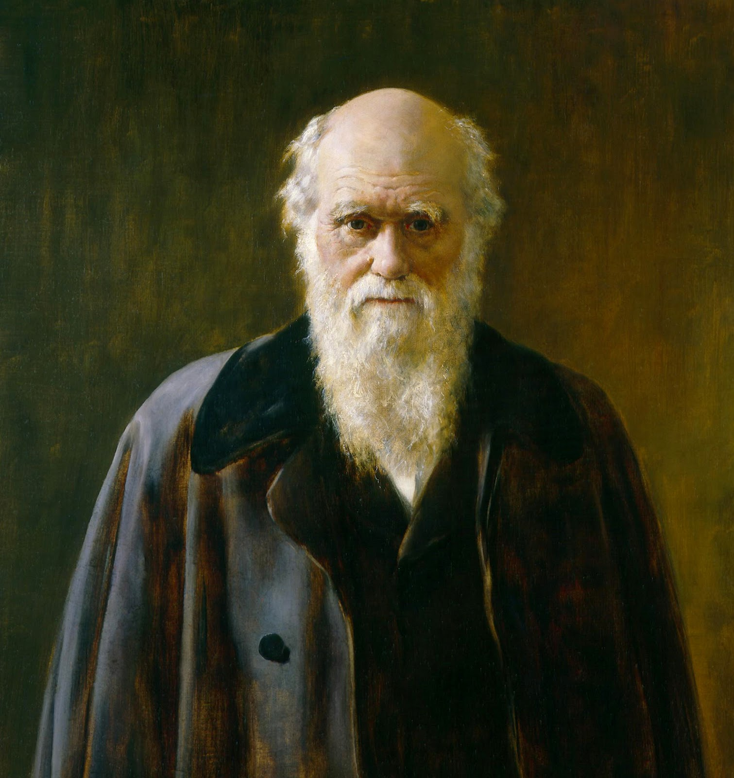 Darwin S Concept Of Natural Selection