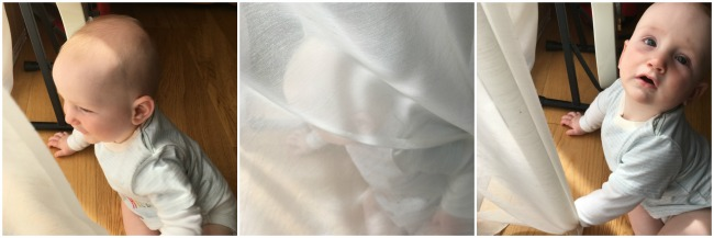 collage-three-images-of-baby-hiding-behind-voile-curtain