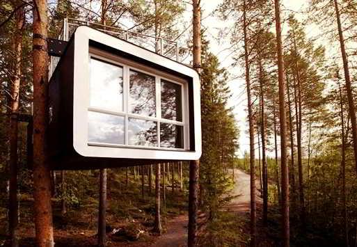 Model Desain Rumah Pohon Sederhana Modern