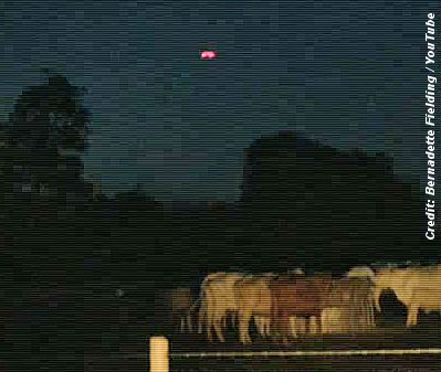 UFO's Over Cow Field in Stamford, UK - August 2013