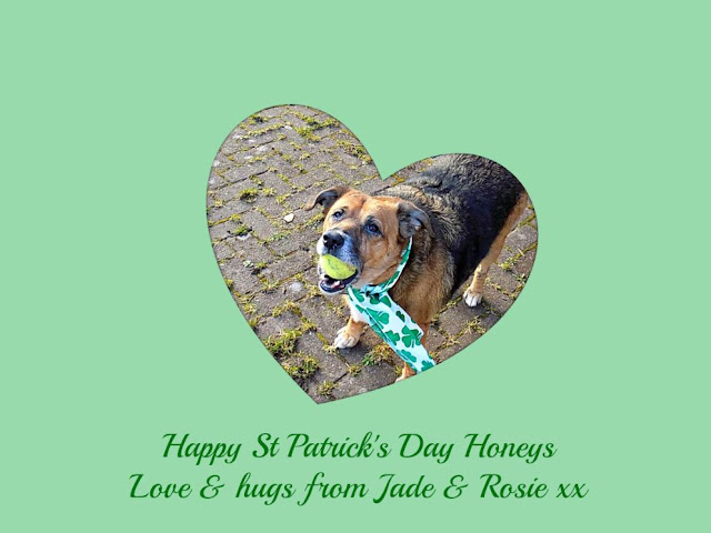Happy St Patrick's Day from Jade & Rosie x