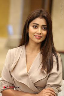 Actress Shriya Saran Stills in Stylish Dress at Gautamiputra Satakarni Team Press Meet  0097.JPG