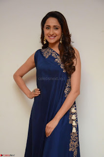 Pragya Jaiswal in beautiful Blue Gown Spicy Latest Pics February 2017 086.JPG