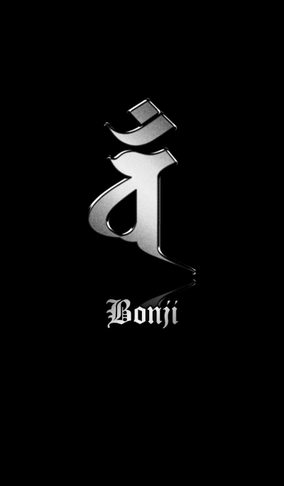 Zodiac Sanskrit [Van] Silver.Black
