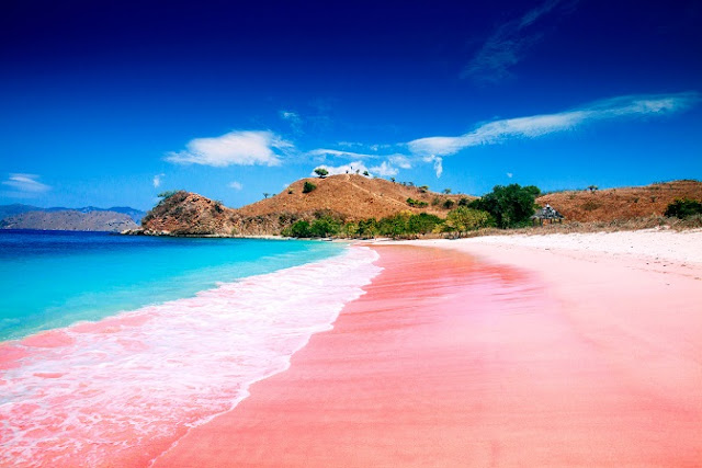 Pink Beach, Lombok, Indonesia
