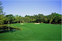 Myrtle Beach Golf Courses Litchfield