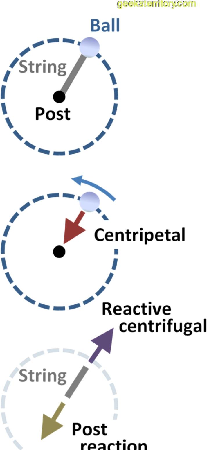 Centripetal, centrifugal force; differences, comparison ...