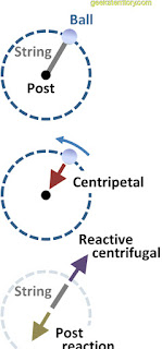 centripetal and centrifugal force