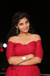 Actress Bindu Pictures in Red Dress at Attarillu Movie Press Meet 0011.JPG