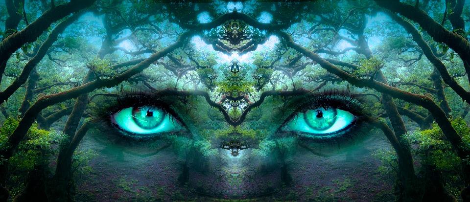 दुनिया का सबसे खतरनाक और रहस्यमय जंगल | Mysterious forest in the world