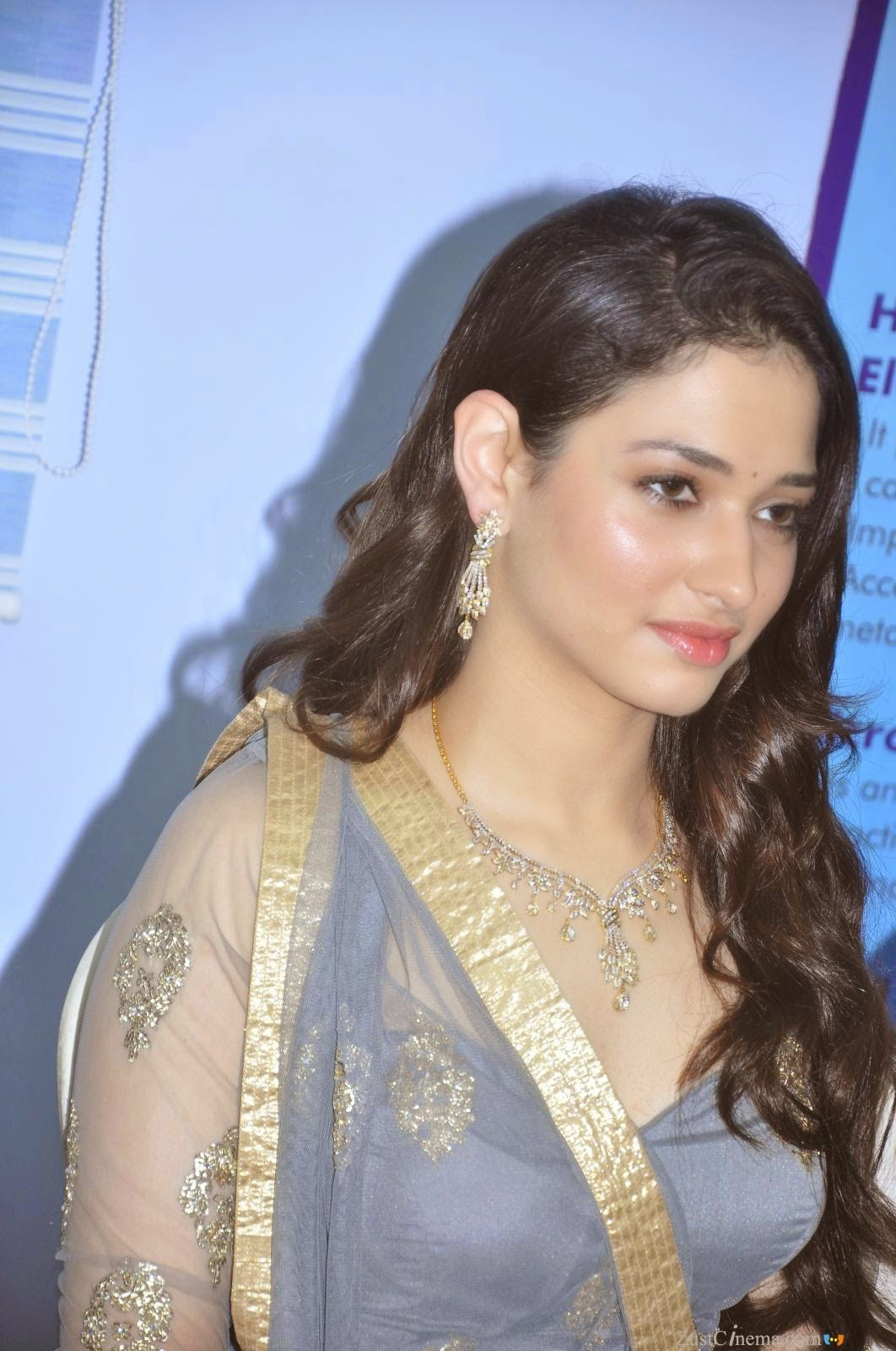 Tamannaah Bhatia Stills At Shop Opening In Blue Dress