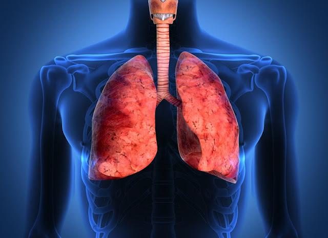 Gejala dan Ciri-ciri Penyakit Paru-paru yang Harus di Waspadai