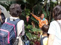 館長の温室ガイドツアー