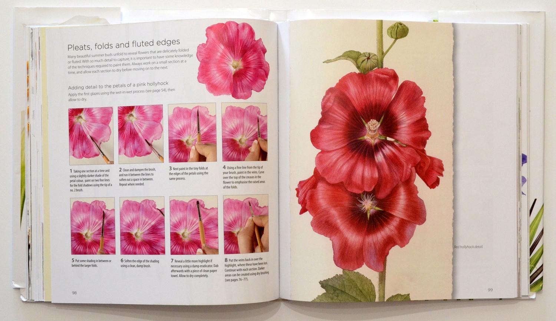 Botanical And Nature Art By Krzysztof Kowalski Billy Showells New Book
