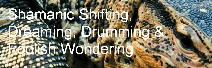 Shamanic Shifting, Dreaming, Drumming & Foolish Wondering