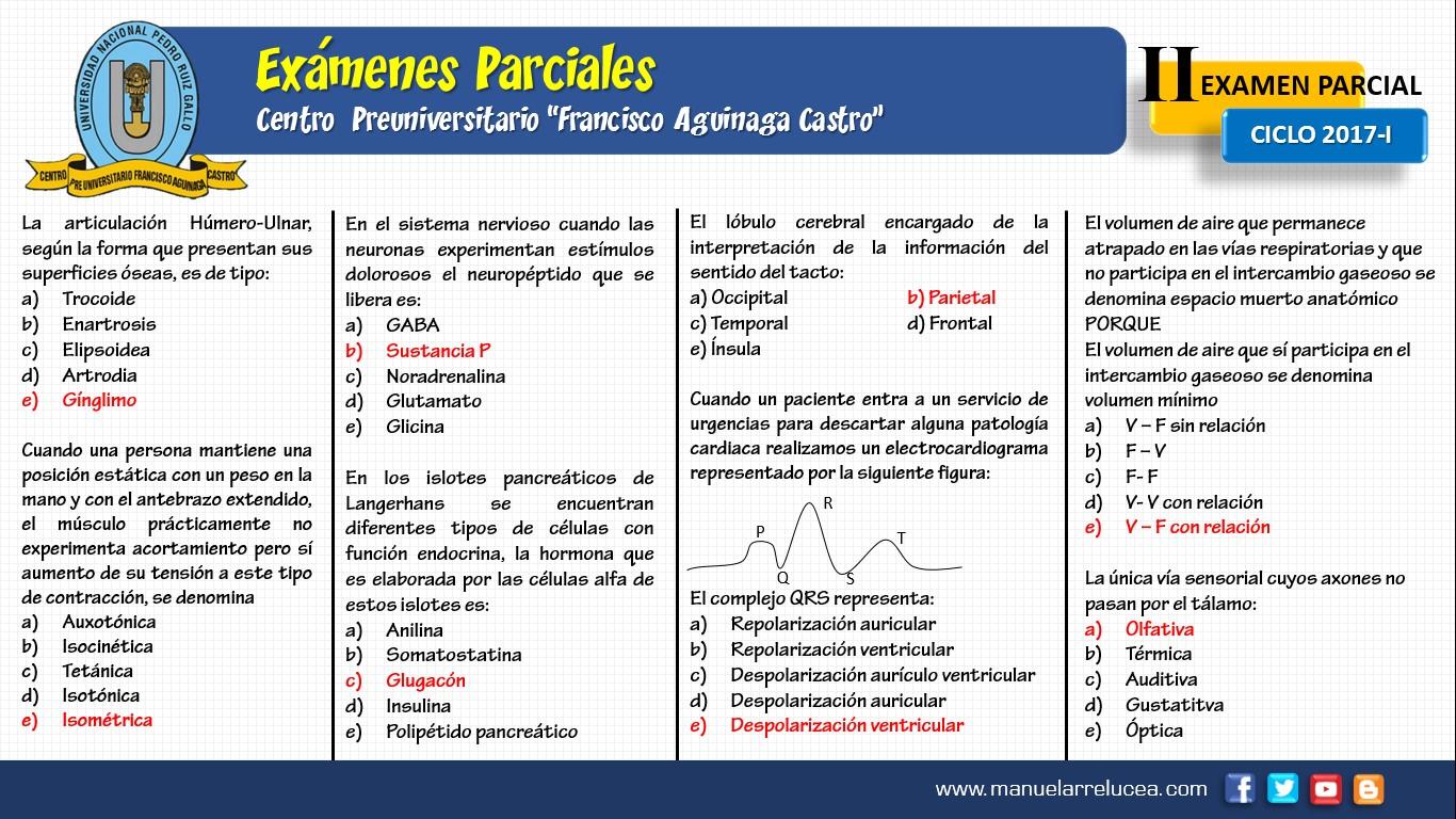 Anatomía y Fisiología: II EXAMEN PARCIAL CPU UNPRG 2017-I