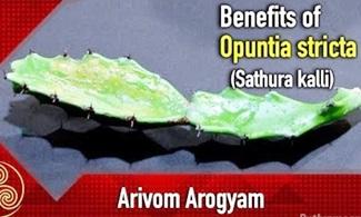 Arivom Arogyam | Samaiyal | Puthuyugam Tv