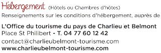 http://leroannais.com/fr/nos-territoires/pays-de-charlieu-belmont/hebergements/hotels
