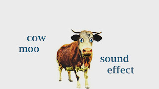 sounds of farm animals