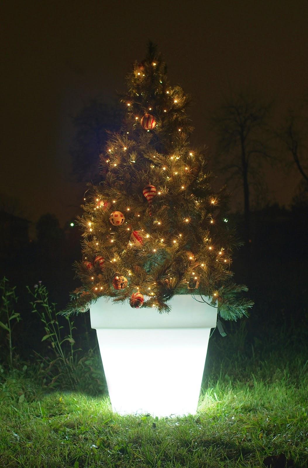 vaso luminoso per albero di natale - Illuminazione Alberi Natale