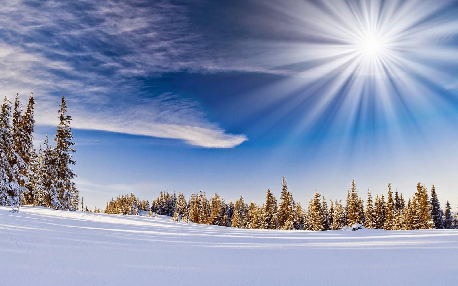 wallpapers: Winter Wallpapers