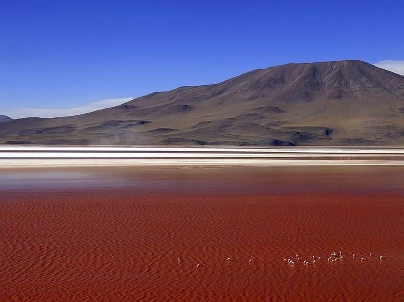La Laguna Colorada de Uyuni | Bolivia