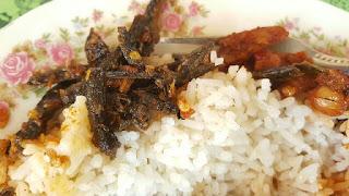 Warung-nasi-belut