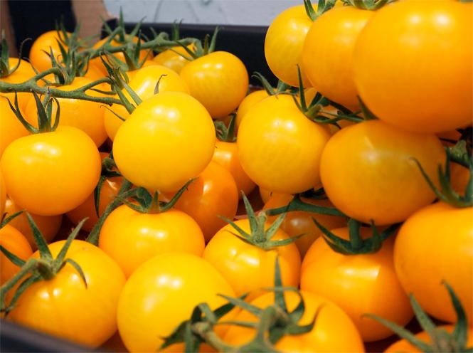 Auf den Spuren von Tomate, Vla & Co - Niederländische Exportschlager hautnah / Mo'Beads / Monika Thiede