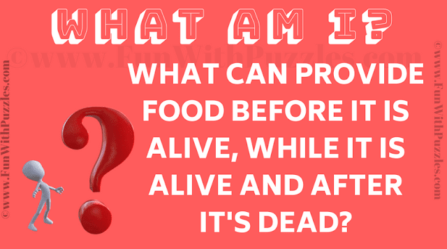 What can provide food before it is alive, while it is alive and after it's dead?