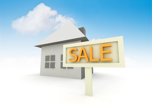 Things You Need to Know about Real Estate Company