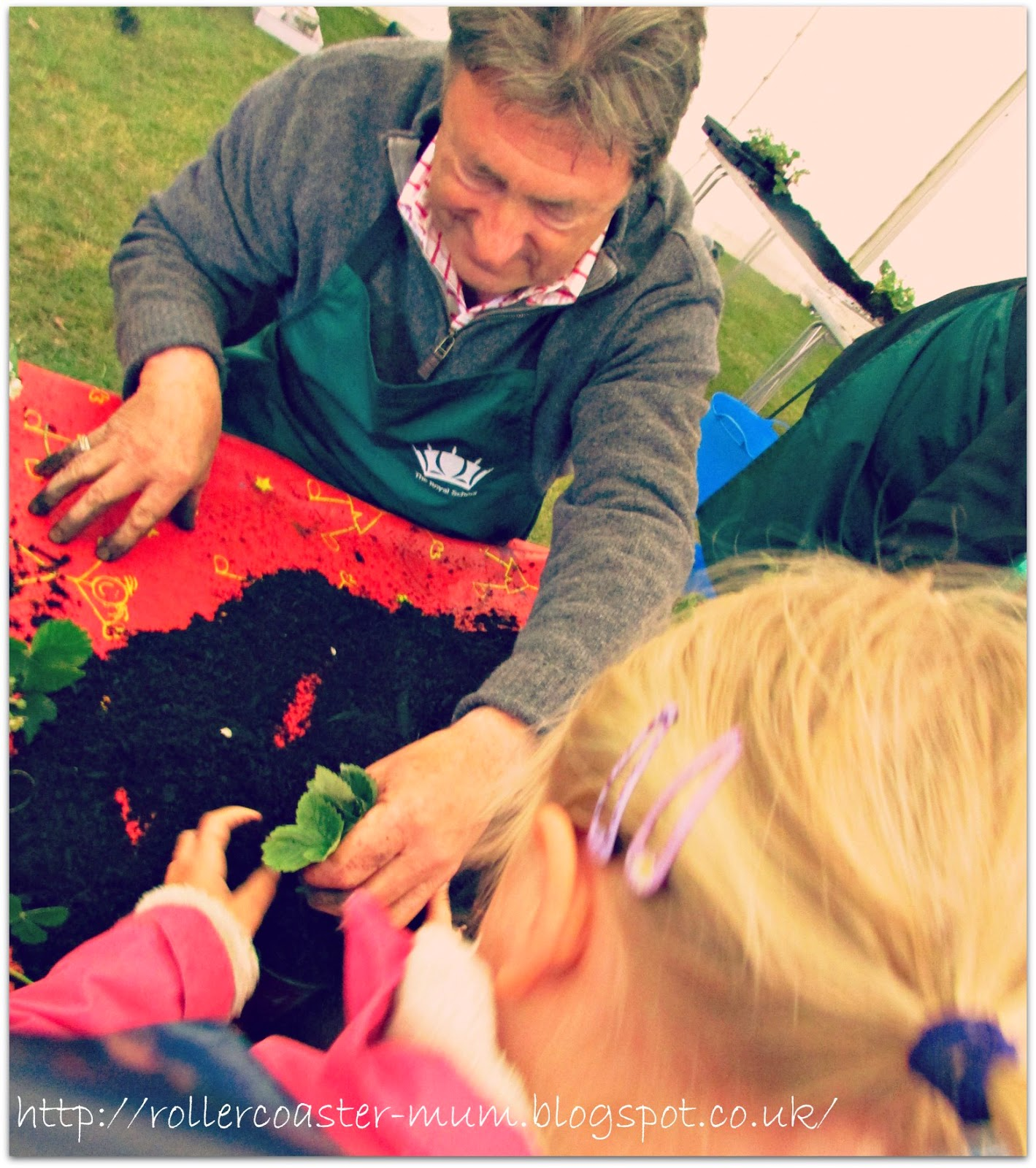 Alan Titchmarsh helping plant strawberry plants at the Royal School's Grow For It