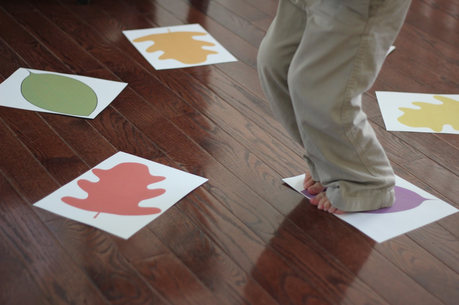 Toddler Approved Fall Leaf Color Stomp For Toddlers