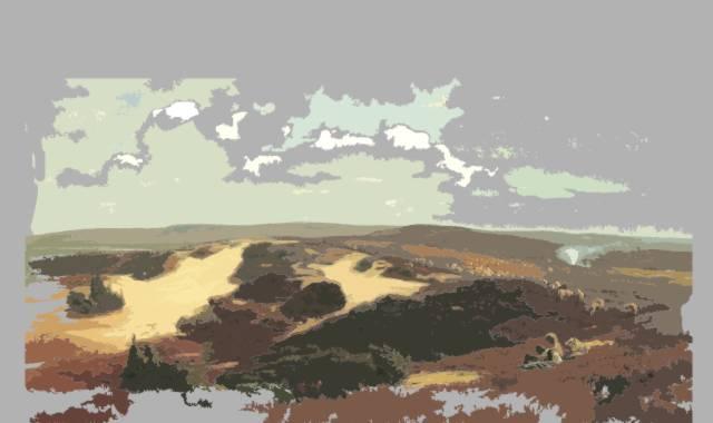 Heidelandschaft Heyse bis Storm