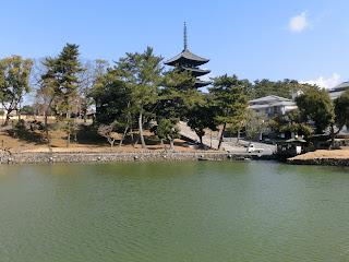 興福寺猿沢池