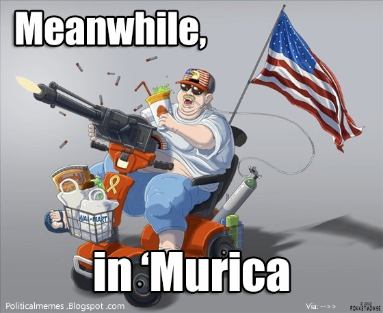 meanwhile-in-%27murica-meme-mobilty-scooter-patriot.jpg