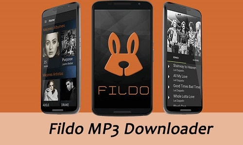 Fildo Apk Download For Android and PC