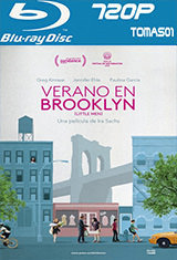 Verano en Brooklyn (2016) BDRip m720p