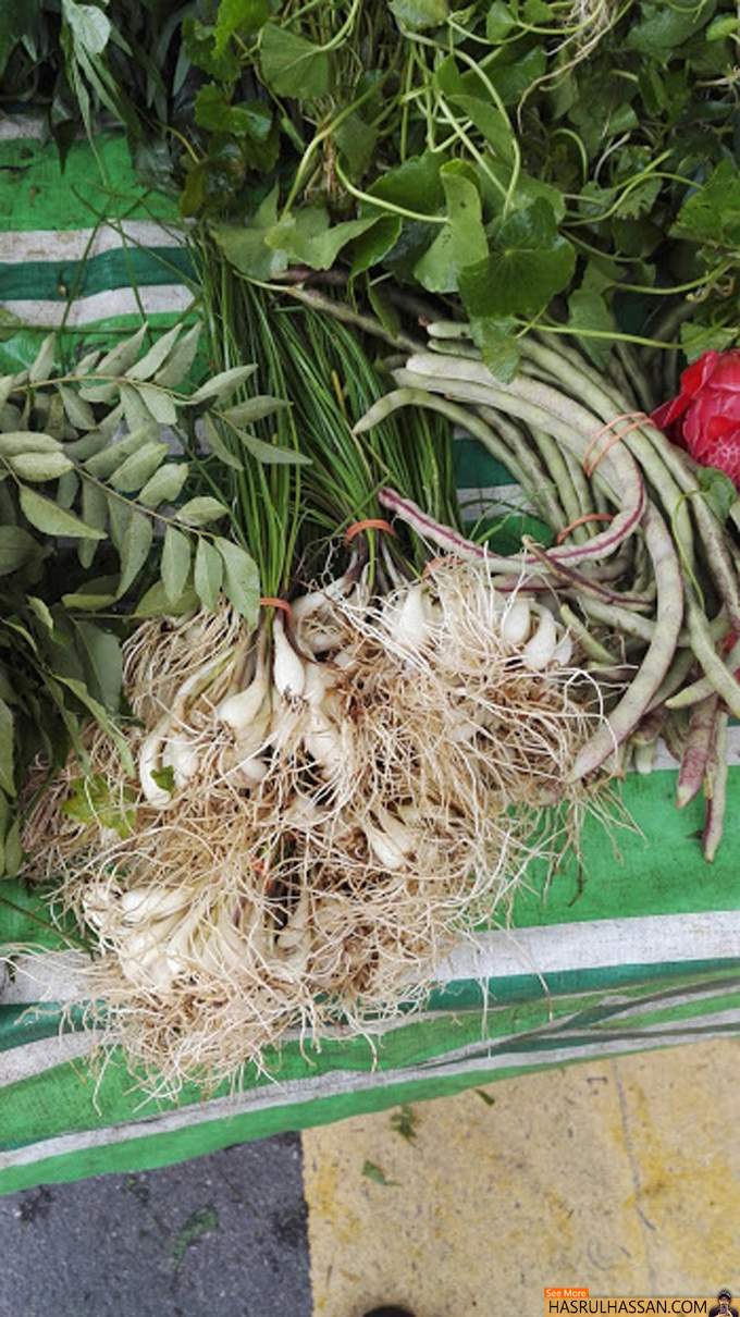Pasar Pagi Gertak Sanggul, Pulau Pinang