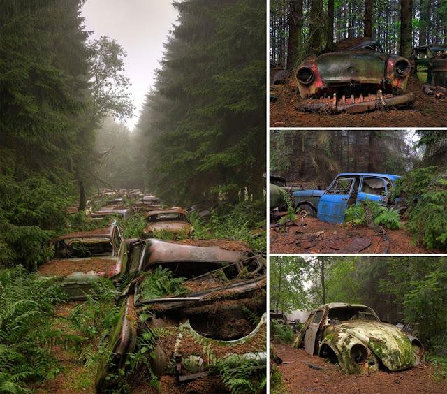 10 Foto Menakjubkan Ini Buktikan Alam Bisa 'Menelan' Peradaban