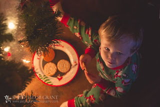 Toddler Christmas Cookie and Tree Photo